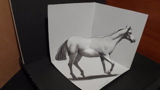 Anamorphic Illusion, Drawing A 3d Horse, Trick Art