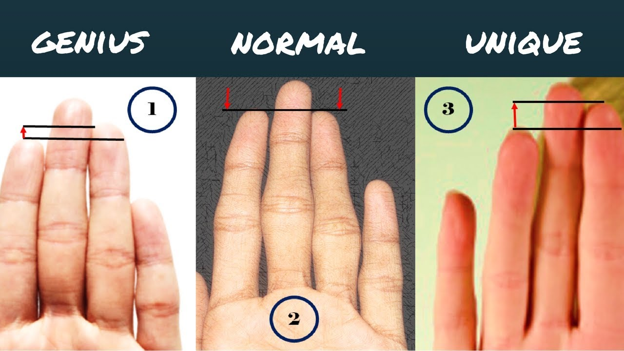 Length Of The Fingers And Your Personality-Palmistry - YouTube