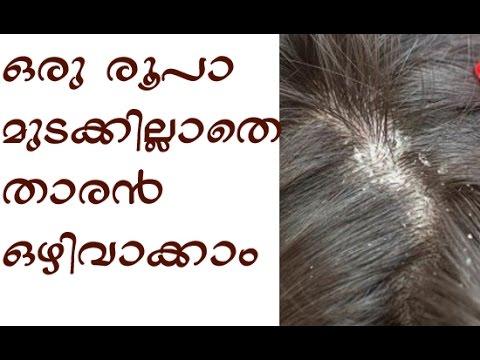 How To Avoid Dandruff In Malayalam Youtube