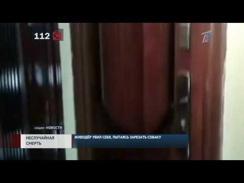 требования в иркутске живодер убил себя вычислительные навыки