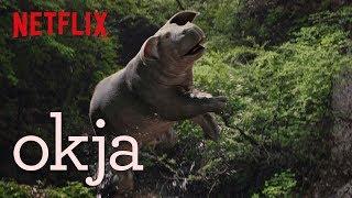 Okja   Featurette: Dolby Atmos   Netflix