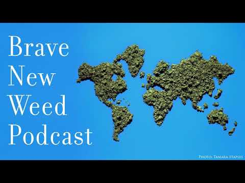 Episode 13 - How Cannabis Can EnhancePerformance For Athletes, Coders and Creatives