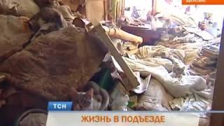 В Перми выселенная из квартиры пенсионерка-кошатница живет в подъезде