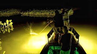 Bow Fishing in Washington D.C. - Snakeheads, Carp and Catfish Potomac River