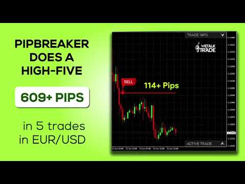The Best Forex Indicator Strategy In A Pack For You Get Assured