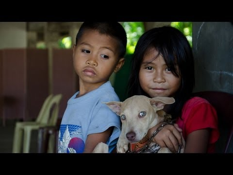 Streets Of Hope: Helping Dogs In The Philippines