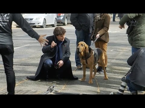 Filming With The Dog | Sherlock