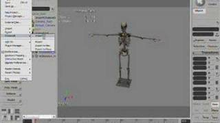 Create HL2 character using XSI THE Collada aggregator Part 1 thumbnail