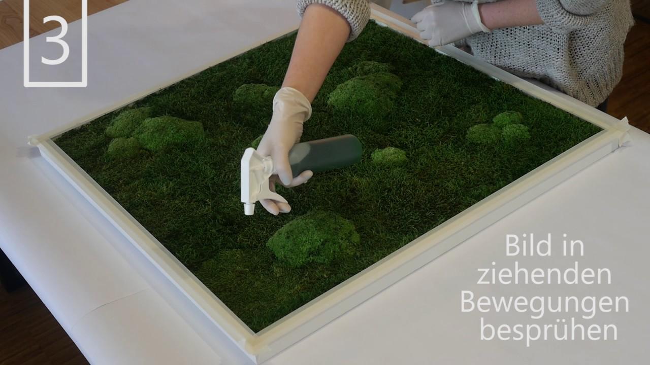 Außergewöhnlich Moos Badematte Referenz Von Cool Nachbegrner Tutorial Stylegreen Nachfrben With Moosbilder