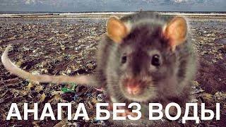 Чувствую себя крысой. В Анапе около суток нет воды. Ротовирус может начаться уже завтра! HELP!