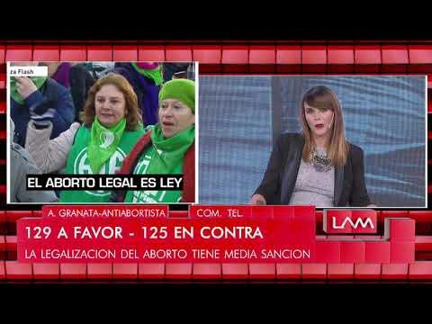 Amalia Granata habló luego de la media sanción de la despenalización del aborto