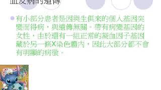 Publication Date: 2020-04-16 | Video Title: #20 慈幼葉漢千禧小學 Team E 朱寳澄、何紫瀅、龐欣