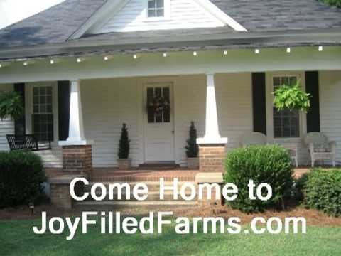 Country Rural Farm Homes For Sale 3 Bedroom 2 Bath Wilson Nc 10
