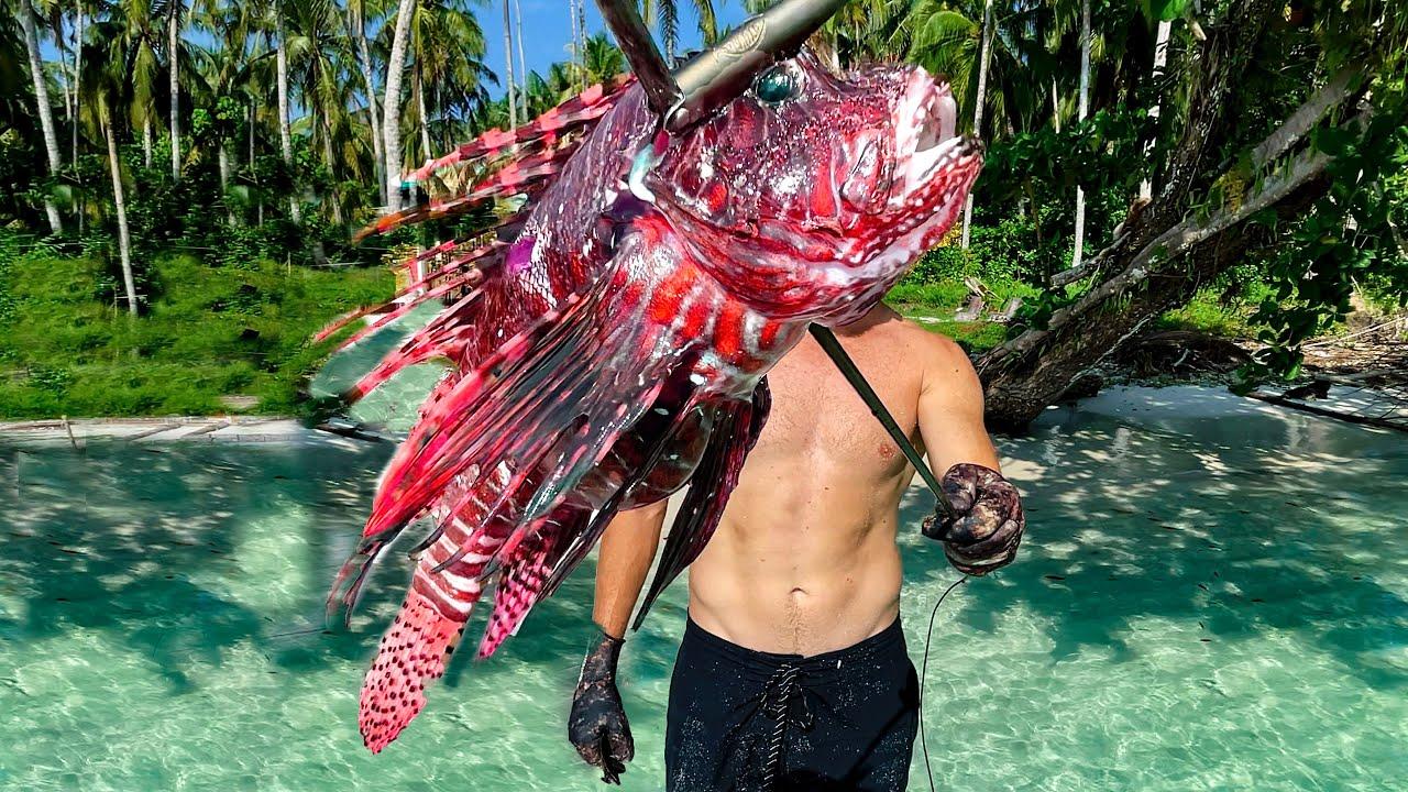 Venomous LIONFISH Solo Survival Seafood Catch and Cook