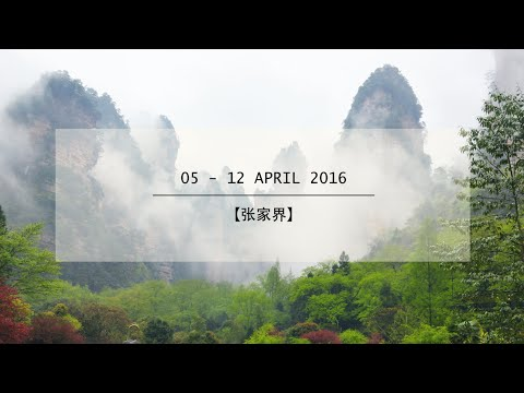 8D7N 【张家界】Travel film - with Chan Brothers Travel