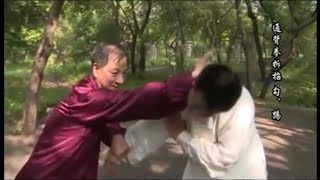 Repeat youtube video Wuxing Tongbei Quan great skills - GM Guan Tieyun - M Stanislao Falanga