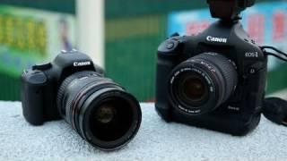 Pro DSLR + Cheapo Lens vs