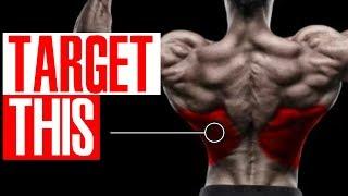 3 Exercises For The LOWER LATS! (Better V-Taper!)