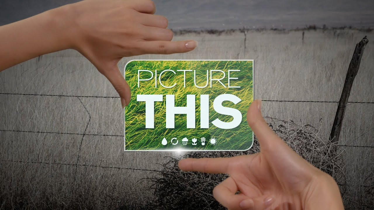 Picture This - YouTube