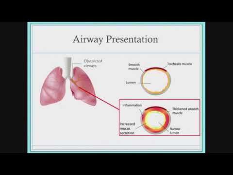 Complications associated with chronic airway infections: Cystic fibrosis as a polymicrobial disease