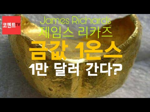 """제임스 리카즈 """"금값 1온스 1만 달러 간다"""" James Richards"""