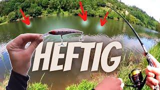 Welch ein KRASSER ZANDER Bestand in diesem Fluss...