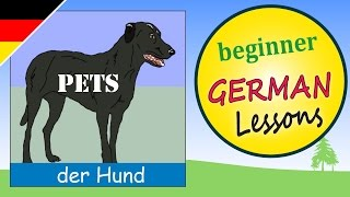 Pets in German | Beginner German Lessons for Children