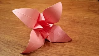 How To Make an Origami Iris Flower