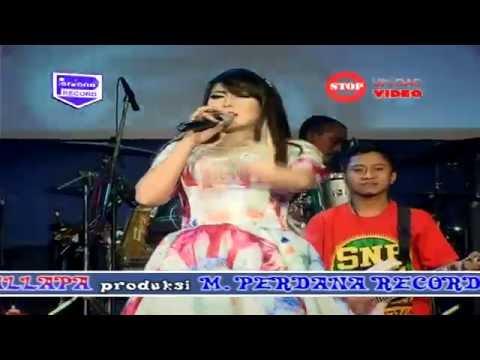 Kimcil Kepolen  - New Pallapa  - Wiwik Sagita [ Official ]