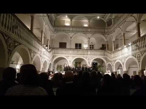 Chianti Song -  Chiantilied - LIVE 2017 - Stimmen der Polizei Klagenfurt