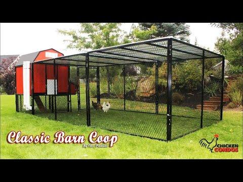 Classic Barn Chicken Coop Build