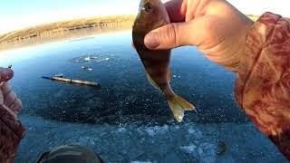 Зимняя рыбалка Открытие сезона 2020 2021 Саратовская область