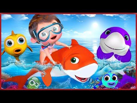 🔴  Baby Shark Dance + More Nursery Rhymes & Kids Songs  Songs For Kids  Banana Cartoons