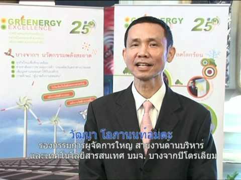 Green Ocean Strategy-Exemplified Organizations