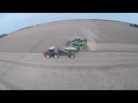Central Illinois Soybean Harvest -  October 2016