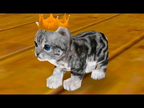 СИМУЛЯТОР Маленького КОТЕНКА #1 Кот призрак. Cat Simulator - и друзья с Кидом на пурумчата