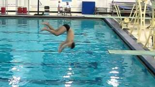 diving 403c