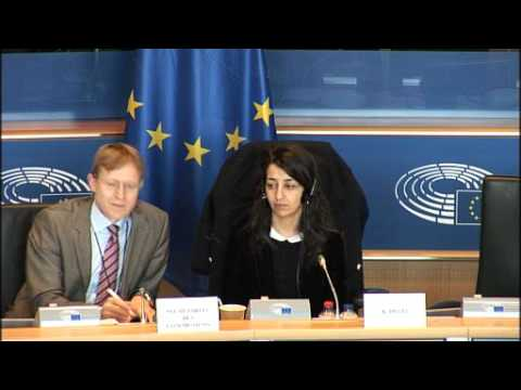 EU Parliament Committee on passenger rights in bus transport (23 March 2017)