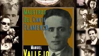 Manuel Vallejo - Y Como Loco Variaba (Alegrías) (Flamenco Masters)
