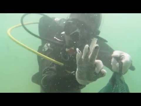 Sydney Underwater Cleanup day