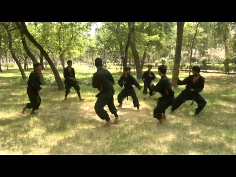 Mixed Martial Arts MMA training in Delhi
