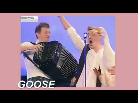 my favourite belarusian eurovision auditions