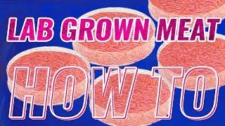 How to make LAB GROWN MEAT - Synthetic Meat Production