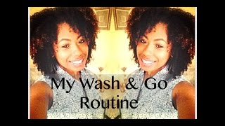 Wash & Go Regimen | for Healthy, moisturized, & Defined Curls