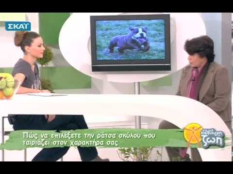 Για μια Καλύτερη Ζωή - 04/01/2012