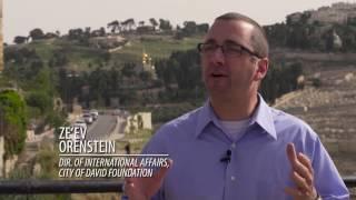 The Amazing City of David