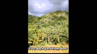 Farm for sale in Puerto Rico 17 acres in mountains