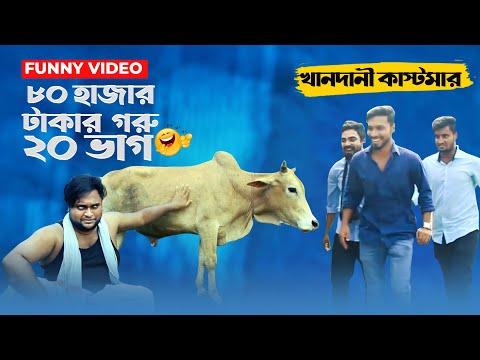 ৮০ হাজার টাকার কোরবানীর এক গরু ২০ ভাগ ? Bangla Kurbani Video Fun Buzz (2019)