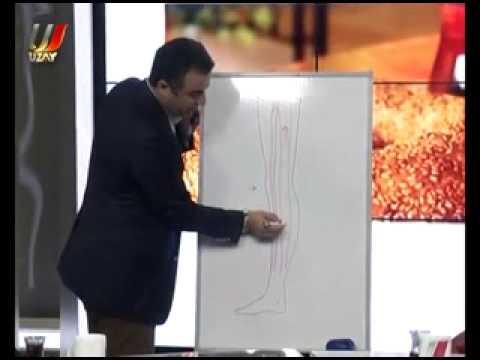 Prof  Dr  Ahmet AKGÜL   Varis Hastalıkları