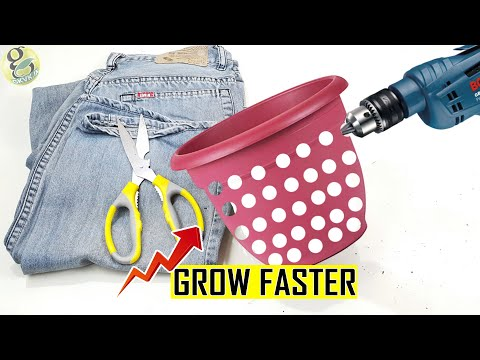 Do This to Grow Plant Faster 1000 times | Air Pruning DIY Experiment Hacks